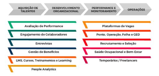 Fluxograma que apresenta os macroprocessos e categorias analisadas no Liga Insights HR Techs