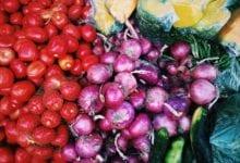 Foto de 16 startups com soluções farm-to-table para o setor de alimentação